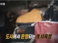 MBC PD수첩, 도시 강아지공장·가정분양사기 다룬다