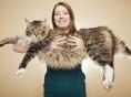 '가장 키 큰 개' '가장 긴 고양이' 2017년판 기네스북의 새얼굴들