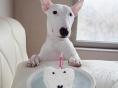 오혁, 오여와 똑 닮은 생일 케이크