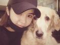 차오루 '강아지들과 편안한 휴식 중'