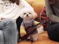 """다비치 강민경 """"이번 싱글 기타리스트 흊춘호 """""""
