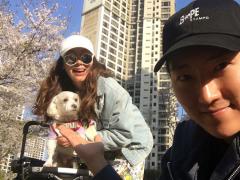 민지영, 15살 반려견 몽이 데리고 벚꽃 구경