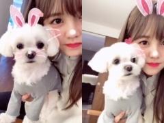 김소현, 반려견 몽숙이와 토끼로 변신 '심쿵'